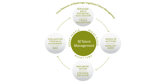 Core Elements of Boehringer Ingelheim Talent Management